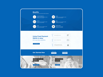 Citibank easy buy ux branding web website icon typography flat minimal design ui