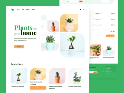 Plant shop website web design website dailyui uiux ui
