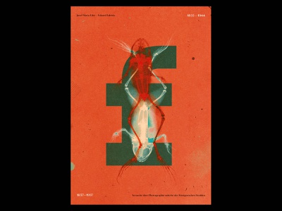 X Rays Poster album cover poster art printing painting xray frog poster design posters print design prints illustration print minimal poster a day gradient daily poster a poster every day poster graphic  design graphic