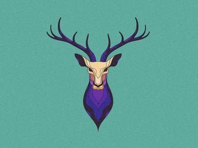 Deer Wip head wip deer illustration vector