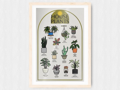 House Plants poster design minimal print illustration house plants plant plants