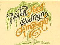 Norah Jones x Rodrigo Amarante