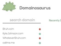 minimal domain search app layout