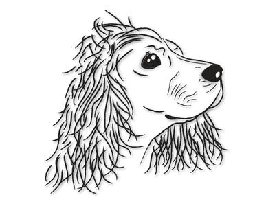 Cocker animals dogs vector illustration