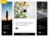 Articles Grid - Free .PSD