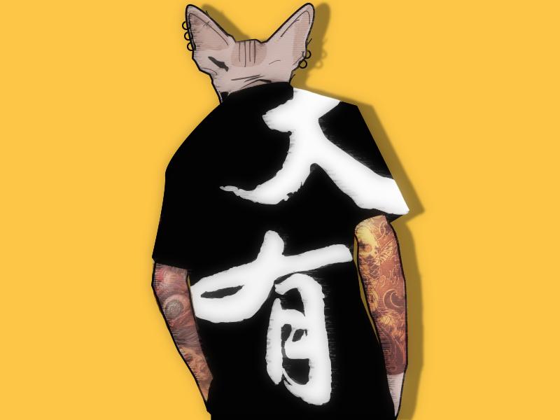 mr.cat No.2 illustration,cat t-shirt color