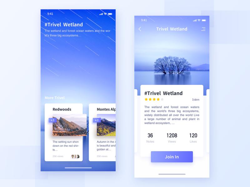 Tourism Interface-2 design ux logo ui app