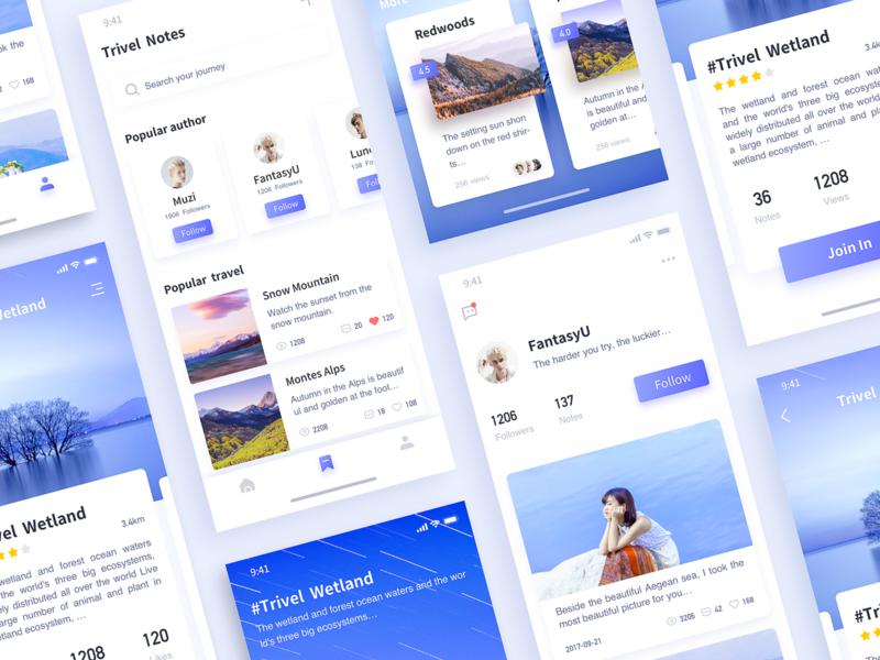 Tourism Interface-3 ux icon app design ui
