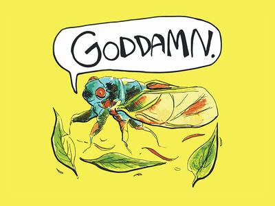 Profanity Bugs: Cicada