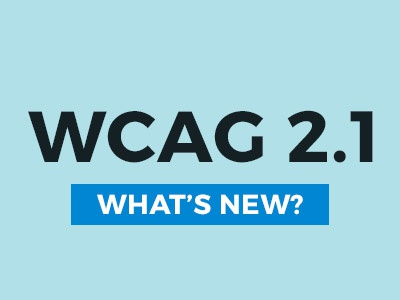 WCAG 2.1 guidelines. wcag website accessibility 508 ada