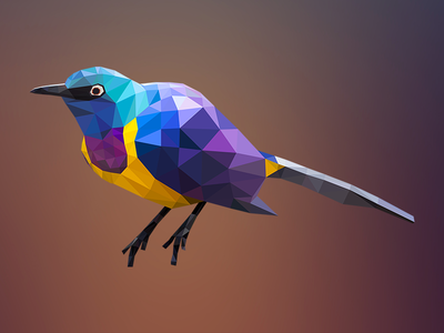 Geometric Tropical Bird vector illustration abstract geometry colorful illustrator