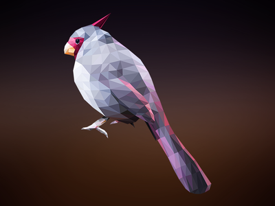 Geometric Bird 2 vector illustration abstract geometry colorful illustrator