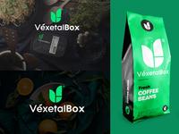 Logo Design and Branding for Vexetal Box