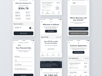 Loan App Wireframes