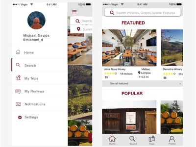Wine Country iOS app app ux design ui
