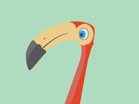 Flamingo 01