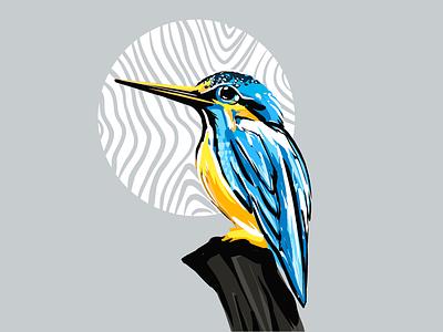 King fisher birds illustration birds ui artwork daily ui digital illustration digital painting procreate drawing digital artist digitalart daily warmup artist illustration artist drawing artwork illustration king fisher