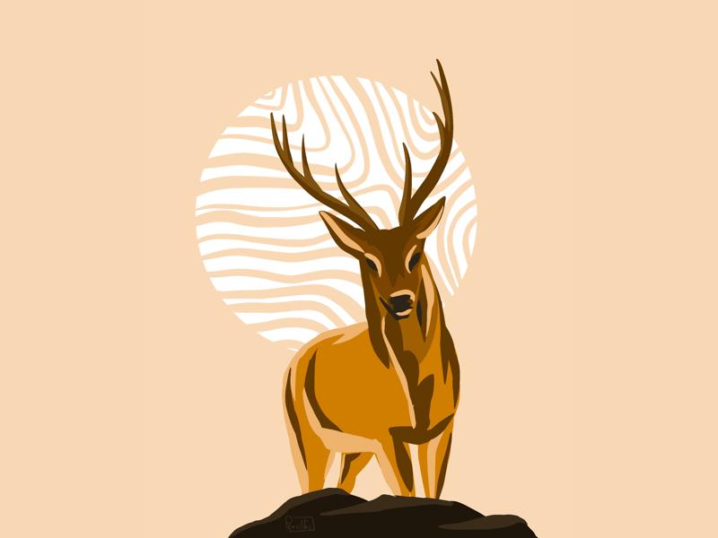 Deer 🦌 my art gallery art lovers animal painting daily warmup daily practice digital illustration artist digital painting procreateart ui artwork graphic design illustration design ui daily ui digital drawing digital illustration digitalart drawing illustration animal deer