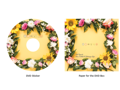DVD Sticker and Paper for DVD Dabba dvd cover sticker graphic