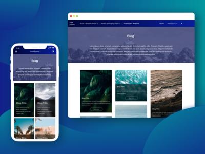 Ecom Experts Website Blog Page