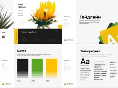 Website (Flowers) & UI kit