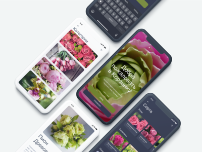 "Mobile App ""Basket"" & UI kit"