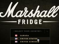 Marshall Fridge Website - Dropdown 2