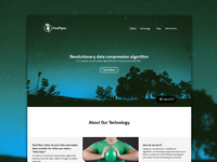 Pied Piper Website Redesign (concept)