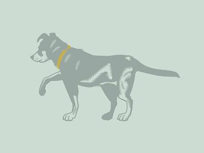 My Dog Barley vectorart vector invitation dog illustration dog