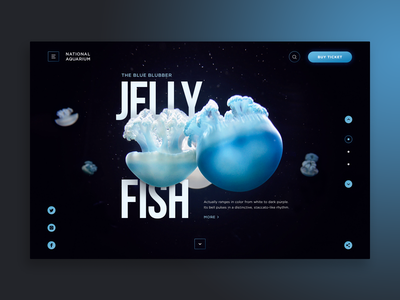 National Aquarium Web-site concept jellyfish aquarium design water sea ocean jelly fish blue web site ui concept