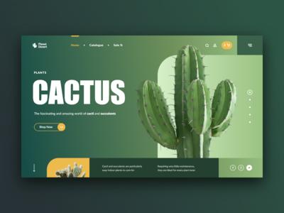 Cacti & Succulents Store Web site Concept