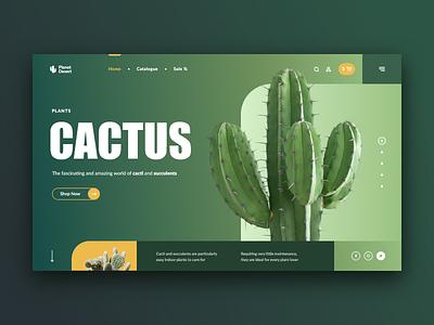 Cacti & Succulents Store Web site Concept plant store plants succulent cacti cactus green xd design web ui site concept