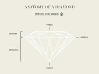 Anatomy of a Diamond illustration