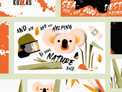 SAVING THE KOALAS - 2D Video Animation freelance help wildfires texture animal illustration australia animals explainer video informative video koalas nature procreate katycreates illustration ill graphic design animation