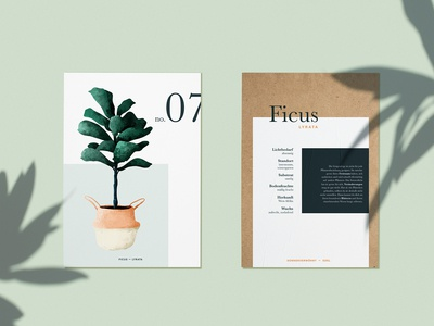 "Plantcard ""Ficus Lyrata"" - personal project"