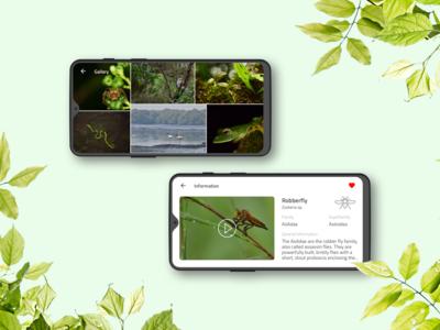 Animal Encyclopedia App User Interface