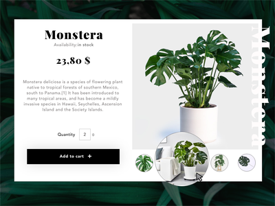 My UI Daily #012 Single Product add to cart e-commerce single product page monstera deliciosa ui daily 12