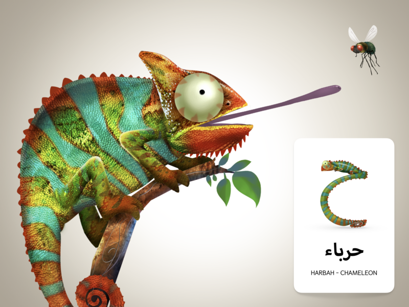 Adventures Of Zee Arabic Flash Cards educational print design flash cards childrens book design character design illustration