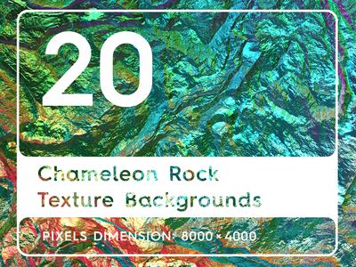 20 Chameleon Rock Texture Backgrounds
