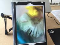 iPad + Procreate + Targus stylus