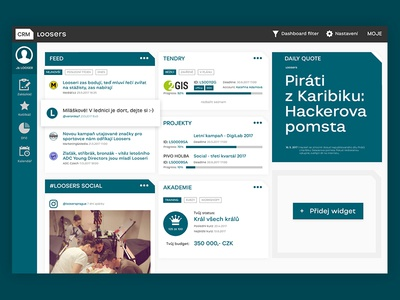 CRM Dashboard - vertical navigation xd adobe xd project management user experience user interface widgets dashboard crm loosers