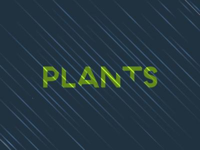 Stormy Plants