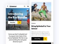 Spikeball Homepage