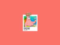 Pantone 2019 - Living Coral