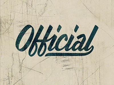 Official Skate Logotype logo lettering