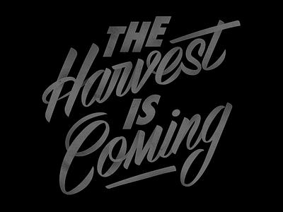 Harvest lettering casual script