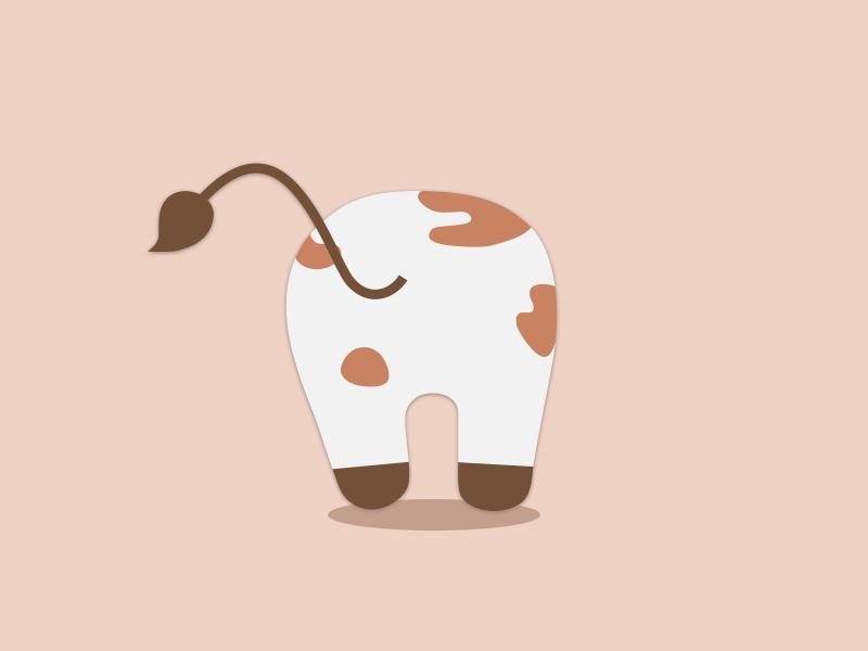 Cow Butt irregular