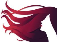 women hair illustration