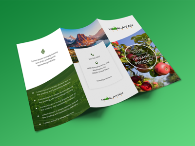 brochure design organic himalaya green clean template flyers design brochure flayers