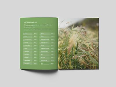 Annual report p20 design report mockup booklet print annual report